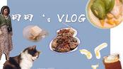 国庆小长假|咸阳VLOG|北平街美食|箸头面|余元蒸排骨|猫咖|海底捞|清吧探店