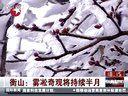 视频: 衡山:雾凇奇观将持续半月[东方新闻]