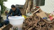 四川农村:看自贡小伙一家在紧张忙碌的制作什么东西?给钱都不卖