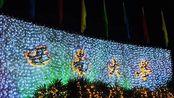 【西南大学】2020新年彩灯VLOG