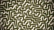 一秒钟生成一个迷宫,不用再一条线一条线的画了啊!【AI+InDesign教程】