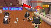 迷你世界:猫用捕鼠网捉老鼠,分析游戏里的几种类型的老鼠!