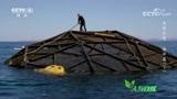 人类对于海洋的干扰有增无减,大型人工饲养鱼类能缓解野生鱼被捕捞的压力