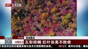 [特别关注-北京]吉林敦化:五彩斑斓 红叶谷美不胜收