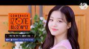 izone 双十一光棍节MNET回归 首张正规专辑预告+主打MV预告
