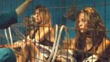 黑心工厂囚禁无数妇女,把妇女当成奶牛养,只为制作化妆品!