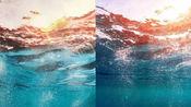 【水彩】九宫格大海洋系列6/9-海洋海底4k纸-五彩缤纷的海底