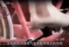 中国好声音:美女翻唱《我在人民广场吃炸鸡》,惊艳全场观众沸腾