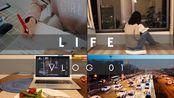 VLOG 01  休假两个月回荷兰 不想工作丧 强迫自己开始新生活