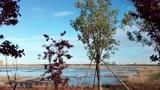 4K山东威海·乳山银滩·潮汐湖湿地公园 -1