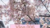 【日本Vlog.006】名古屋/大阪/京都五日游/樱花季太美好了