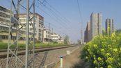 平顶山站西拍车(0061又来了)