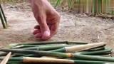 看看农村小伙是怎样用竹子在野外捉流浪狗的,这智商服了