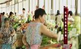 [是真的吗]吃南瓜能降低血糖?