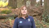 马达加斯加救助辐射陆龟的一则小故事 来自俄勒冈州动物园