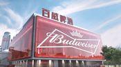 【孙晔】百威啤酒-红运到家