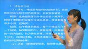 2021年考研 沈政《生理心理学》(第2版)网授精讲班【教材精讲+考研真题串讲】