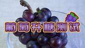低碳生酮减肥可以吃葡萄吗?吃给你看...