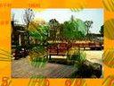 六盘水仿真园林_0531-55603077_假山_假树_假花www.fangzhenshu.com
