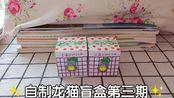 【自制盲盒】自制龙猫盲盒第三拆丨呜呜呜,作业还没做完(;Д`)
