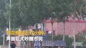【黑龙江】哈尔滨市内有人凌晨放烟花 声音巨大严重扰民