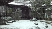 72. [4K] 仁和寺雪 京都の庭園 Ninna-ji Temple in Snow [4K] The Garden of Kyoto Japan