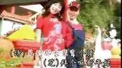 2004年   黄美诗与刘丽芝  -  今年好运来—在线播放—优酷网,视频高清在线观看