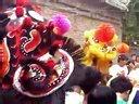 《何氏龙狮团》郑州总团、开封、焦作飞龙团、洛阳、安阳五家分团