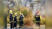 广东佛山高明区荷城街道凌云山发生山火:山火持续 火势得到进一步控制