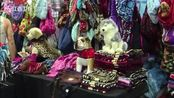 美国:宠物博览会上宠物用品五花八门 新闻夜航 170506
