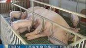 10月分 江西省生猪价格同比上涨1.53%
