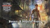 【热血无赖电台】Boosy & Hawkes Radio