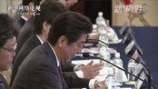 日越领导人称将合作推动TPP早日生效