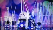 化学实验——离子检验完善版(附有斐林试剂反应部分视频)