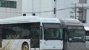 BYD 比亚迪 K11 样版试验车 (凯胜綠能)