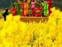 枝江市市歌——我的枝江我的家乡㊣红遍中国(流畅)_320x240_2.00M_h.264