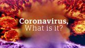 【科普向】新型冠状病毒——从病理到疫苗的研制