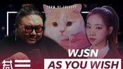 专业制作人观看宇宙少女《AS YOU WISH》MV的reaction视频