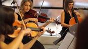 弦乐四重奏 & Can't Help Falling In Love | Dolce Ensembles String Quartet/Violin Cello