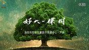 洛阳妇儿中心MV《好大一棵树》[洛阳唐影文化传媒]—在线播放—优酷网,视频高清在线观看