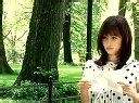 前田敦子3rd单曲特典A2.Making of Atsuko in NY纽约.flv