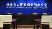 湖北副省长回应除武汉市外其他周边市的救治情况