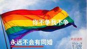 LGBTQIA+【子璃天】关于2019年12月28开始的民法典(草案)征集意见电脑网页投递意见的操作