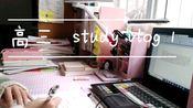 【高三vlog】写作业 修改作文+誊写
