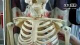 周氏康复馆对假性心脏病的探讨和治疗