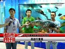 吉林省电视台都市频道采访大安市孙恒臣
