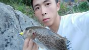 小戴路亚:小戴找到鳜鱼标点没2天,就被钓友报点了,很无奈