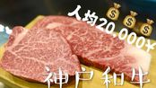 傻人在香港 VLOG.54【神户】连吃两顿A5和牛是一种怎样的体验?