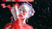 【刘诗诗】白月光与朱砂痣,芭蕾诗与红梅诗。