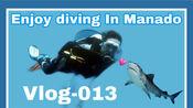 Vlog013--带着勇气和爱的人一起去美娜多潜水吧!这里有海底世界,这里有彩色房子,这里有恐怖市场,这里有火山,这里有五色湖,这里有耶稣雕像!